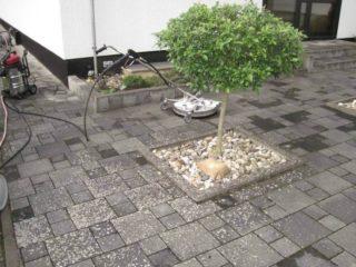 Steinreinigung Terrasse Hof und Einfahrt Algen und Flechten werden beseitigt in Dortmund